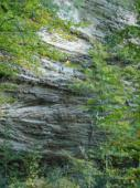 Red River Gorge (The Zoo)
