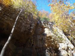 Red River Gorge (The Crossroads)
